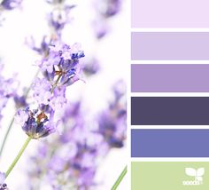 spring Archives | Page 2 of 20 | Design Seeds