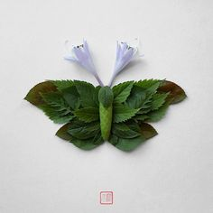 insects made of flowers by Raku Inoue