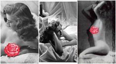 The Best Photos Of Marilyn Monroe.....That Aren't Marilyn Monroe Marilyn Film, Fake Images, Marilyn Monroe Quotes, Most Famous Quotes, Playmates Of The Month, Italian Actress, Pin Up Models, Art Poses, Classic Actresses
