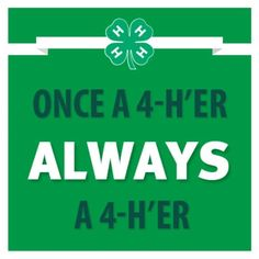 1000+ images about 4-H on Pinterest | FFA, Youth and Cattle