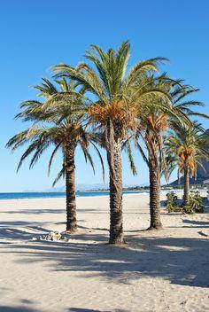 San Vito Lo Capo, Sicily, Italy #lipari #sicilia #sicily