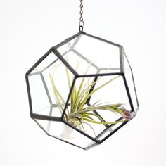 I adore that this is made from recycled window panes. I get so many compliment on it when I'm hosting parties.