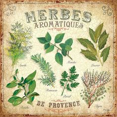 For the Kitchen / Herbs Decoupage Vintage, Decoupage Paper, Vintage Diy, Vintage Labels, Vintage Cards, Vintage Paper, French Vintage, Images Vintage, Vintage Pictures