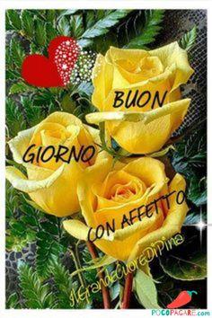 Immagini Belle Di Buongiorno - Pocopagare.com Animated Smiley Faces, Happy Birthday Ecard, Italian Greetings, Italian Memes, Beautiful Birds, Good Morning, Christmas Ornaments, Holiday Decor, Italian Language