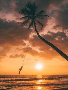 The famous rope swing at Dream Cabana in Sri Lanka. Definitely worth a visit!  x Wanderlust