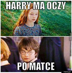 Memy z HP # Losowo # amreading # books # wattpad Harry Potter Mems, Tom Felton Harry Potter, Harry Potter Wizard, Harry Potter Fan Art, Ginny Weasley, Hermione, Ravenclaw, Polish Memes, Funny Mems