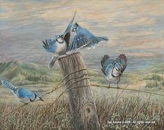 artist, Gail Adams