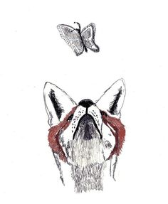Fox Art Print - The Chase - Fox and Butterfly, Corella Design