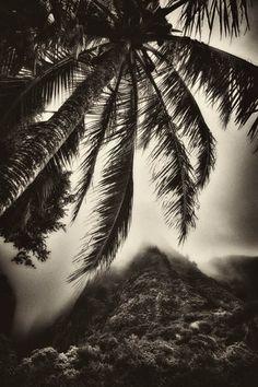 Hawai'i As I Imagined It Once Was photo set by Earl Richardson