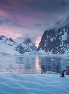 Lemaire Channel Sunset (Antarctica) by Daniel Kordan Antarctica Travel Destinations Antarctica Destinations, Antarctica Cruise, Travel Destinations, Travel Tourism, Landscape Photography, Travel Photography, Channel, Ultimate Travel, Travel Aesthetic