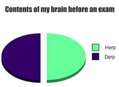 Most important final of the year: | College Explained Perfectly In PieCharts