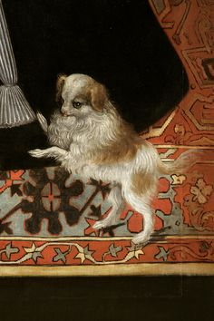 Portrait of Lady Margaret Douglas, Countess of Lennox (1515-78) ~ British school (detail of her little dog)