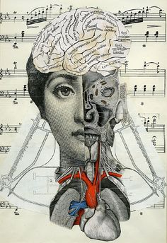 I like combining found and vintage objects, images and text to make assemblages and collages. I like to incorporate anatomical and scientific themes in my collages. Soul Collage, Mixed Media Collage, Collage Art, Photomontage, Collages, Psy Art, Anatomy Art, Brain Anatomy, Foto Art