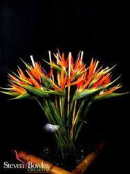 Image result for bird of paradise arrangements