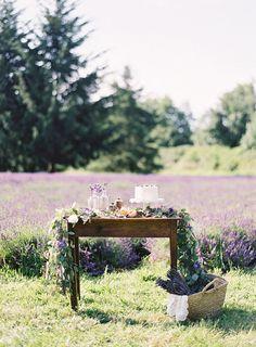 coffeeishtea:    lavender, lavender, lavender.    Couldn't have said it better myself.