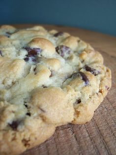 "Ultimate Chocolate Chip Cookies ~  (New York Times recipe) ""I don't care that this New York Times cookie recipe has been around for awhile. I love it. It's fabulous. I had to post it."""