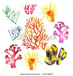 Illustration of the watercolor coral reefs on a white background - stock photo