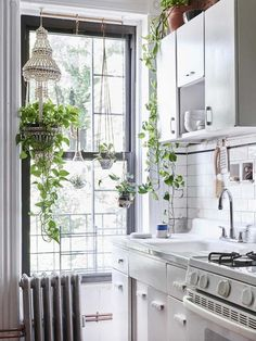 Light and lovely white kitchen, with hanging plants.