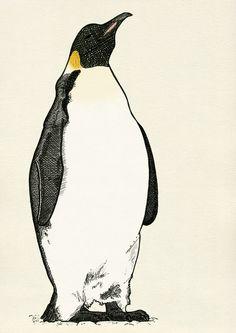 I love penguin sketches