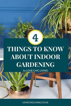 Here's everything you need to know about indoor gardening and house plant care! Whether you're looking for care guides for low light houseplants, the best home decor for houseplant aesthetic or how to start an indoor garden; this post has you covered! Indoor Greenhouse, Indoor Gardening, Indoor Plants, Best Grow Lights, Growing Plants Indoors, House Plant Care, Uk Homes, Shop Interiors, Home Decor Trends