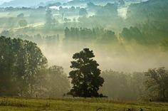 Parc régional du Livradois © CRDT Joel Damase