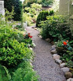 Garden Paths Keep your path from spilling into your garden beds by using stone borders.Keep your path from spilling into your garden beds by using stone borders. Gravel Garden, Outdoor, Backyard Landscaping, Gravel Walkway, Outdoor Gardens, Landscaping With Rocks, Path Edging, Backyard, Rock Pathway