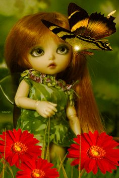 Куколка и бабочка - анимация на телефон №1261590