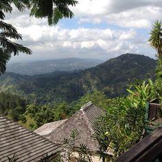 18 best strawberry hills irish town jamaica images strawberry rh pinterest com