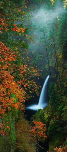 Metlako Falls ~ Port nature love