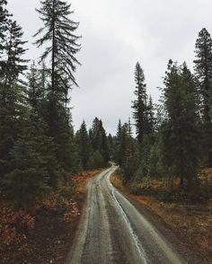 Картинка с тегом «autumn, fall, and nature»