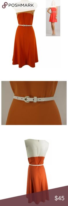"""20W 2X ORANGE COLORBLOCK DRESS w/Belt Plus Size We LOVE this sexy, sweet, colorblock summer dress!  *Belt included!*   Size: 20W Back zip Removable white shiny belt included  Eye-catching colorblock print Slightly stretchy, super comfortable fabric Measurements: Bust (armpit to armpit):  47"""" relaxed - stretches to 50"""" Waist: 44"""" relaxed - stretches to 49"""" Hips:  65"""" relaxed Length: 41"""" (top of shoulder to bottom hem)  Condition:  PRISTINE CONDITION! Fabric Content: 63% Polyester  33% Rayon…"""