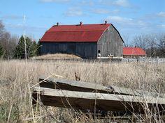 Old barn in Markham, Ontario
