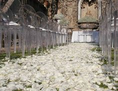 Petals for. Ceremony. La Rosa Canina FIRENZE www.larosacaninafioristi.it