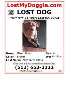 http://www.lostmydoggie.com/pet_images/pdf/faxing/86217.pdf