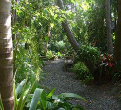 Hamilton's Tropical Garden, Open Gardens