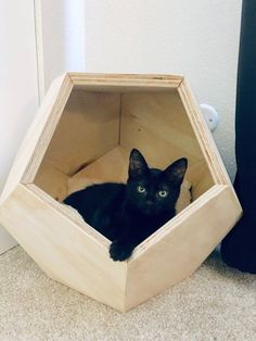 This item is unavailable - Geometric Cat House Dodecahedron Pet Abode LA/OC Area Animal Projects, Wood Projects, Crazy Cat Lady, Crazy Cats, Cat House Diy, Kitty House, Geometric Cat, Wood Stain Colors, Cat Room