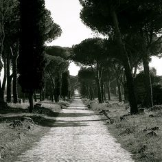 a path, a purpose; it's not black and white