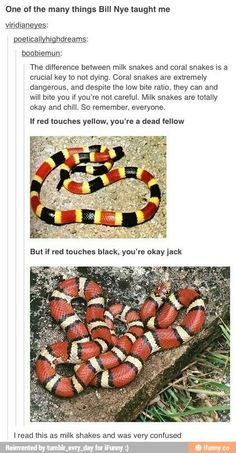 Another way could be: milk snakes have milky-colored yellow and coral snakes look like colorful eels(which live around coral) BOOM there. Survival. Yeah.