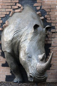 One of the most popular sculptures at the Houston Zoo is this white rhino busting though a brick wall.
