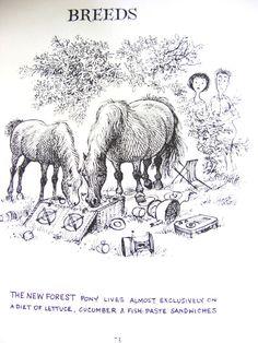 Funny Thelwell Vintage Art Print A Leg At Each Corner Riding Horse Pony Children #Vintage