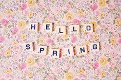 [ hello spring ]