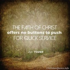 """The faith of Christ offers no buttons to push for quick service. The new order must wait the Lord's own time, and that is too much for the man in a hurry. He just gives up and becomes interested in something else. Christian Verses, Christian Life, Jesus Quotes, Faith Quotes, Godly Quotes, Quotes About God, Quotes To Live By, Aw Tozer Quotes, Spiritual Armor"
