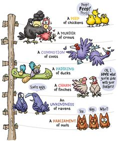 Let's Talk About… Collective Nouns (Unofficial Pt. 3)   Once Upon A Lexicon Grammar Posters, Grammar And Punctuation, Grammar And Vocabulary, Grammar Lessons, English Vocabulary, English Grammar, Grammar Book, 2nd Grade Grammar, 2nd Grade Ela
