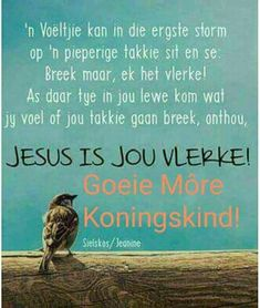 Jesus is ons vlerke…. Morning Qoutes, Christ Quotes, Goeie Nag, Goeie More, Afrikaans Quotes, Good Night Quotes, Good Morning Wishes, Trust God, Positive Thoughts