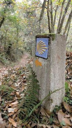 El camino de Santiago a su paso por Colunga