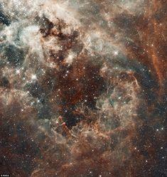El nacimiento de una estrella en la nebulosa Tarántula