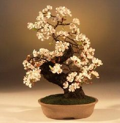 """The flowers and branches of this artificial tree are created from luna clay, making them very flexible and therefore can be adjusted to your personal preferences or left as shown in the image.  The hand painted flowers are so life-like that you can almost smell the fragrance of the cherry blossoms.  This tree will retain its beauty for many, many years to come and can be cleaned with a slightly dampened cloth.