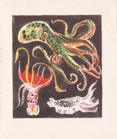 My Vintage Avenue !!! 50's and 60's illustrations !!!: Le Royaume De La Mer illustrated by Rojan, 1948.