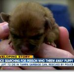 A Mother Dog Trying To Free Puppies Thrown Into A Trash Bin? What Happen?  You should not miss the video below, it   has already 487,609 views  . A mother dog has a heart of a human mother, do you agree? Police officers rescue a mother  dog  who tries to free a puppy that is thrown into a trash bin.  A woman called 911 because she heard someone is crying from the trash bin. They soon find out that the mother dog is on top, trying to save the puppy.  What happen to the Puppy?   Spe..