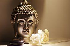 "Buy Artland Premium Wall Foil ""Tanja Riedel: Buddha& Head Rest with White Roses"" online OTTO OTTO""> Premium wall film Statues, Buddha Kopf, Wall Film, Buddha Lotus, Family Tree Art, Buddha Decor, Religion, Buddha Painting, Rock Painting"